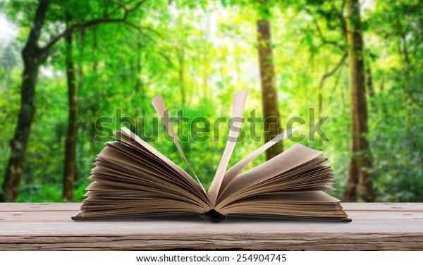 Livre ouvert sur la table en bois dans la forêt verte