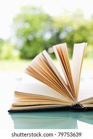 Open book over a light nature background