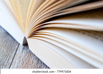 open book with pages - literature and education - finding information
