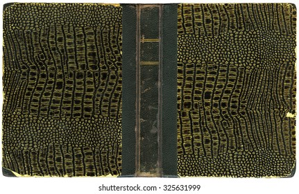 Open book - vintage cover with artificial crocodile leather - isolated on white - XL size