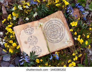Open book with wiccan festivals chart among spring flowers. Wicca, esoteric, divination and occult concept with magic objects for mystic rituals, Halloween, Beltane background