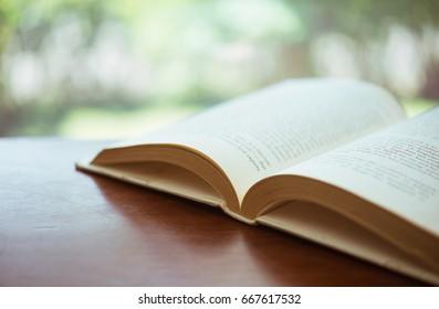 Open book in a window sill - Split toned