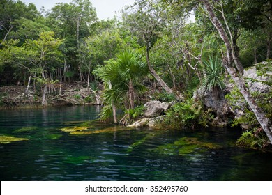 Open cenote with crystal transparent water, Tulum, Mexico