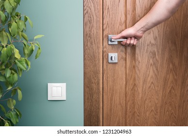 Open the door. Hand on door handle. Close - up elements of the interior of a beautiful apartment. The white switch on the green wall. Houseplant