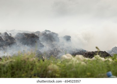 Open dump site and open burning waste site