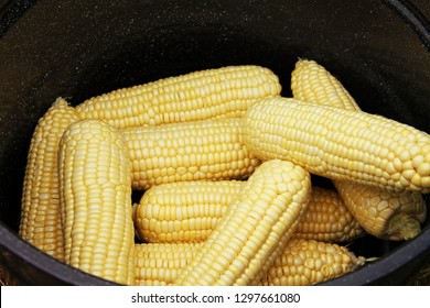 Open ears of corn win pot ready to be cooked close uo macro photo