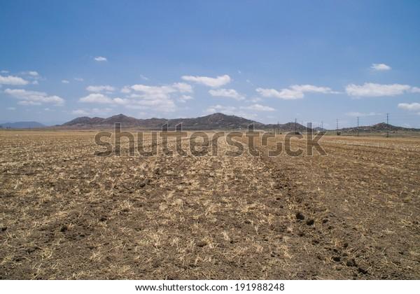 The open farmland in Southern California, USA.