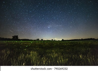 An open field littered with lightning bugs making their nightly route with the stars overhead.