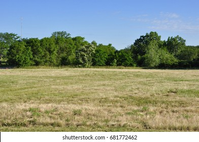 Open field with trees on the horizon