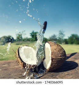 open a fresh hard coconut with a knife, splashed fresh water and coconut milk