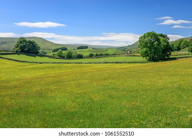 Open green countryside in Wensleydale North Yorkshire England