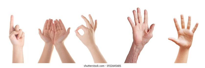 The open hands of a young and old woman