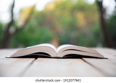 Open Holy Bible in nature background