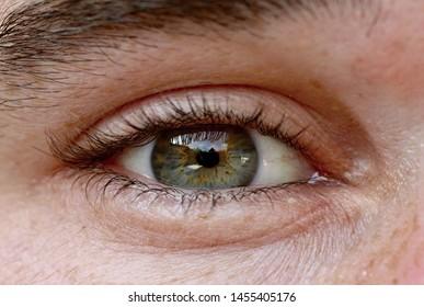 Open human eye, close up view