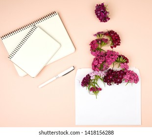 open notebook with blank sheets and Turkish carnation Dianthus barbatus flower buds and a white paper envelope on a peach background, top view