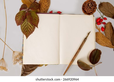 Open notebook and pen in autumn ambient