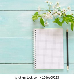 Open notebook with pencil and sprig with cherry blossoms on mint wooden background. Copy space background, top view flat lay overhead