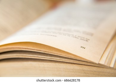 Open old book. Yellowed pages. Page number 231. Paper texture. Macro.