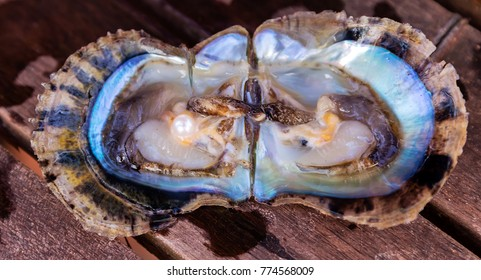 Open oyster with harvest pearls mother-of-pearl. Seashell