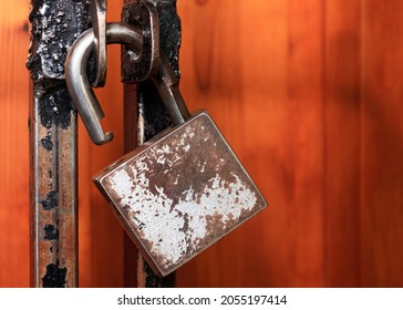 Open padlock hanging on a metal lattice. Open access concept, login options, freedom, liberation Copy space.