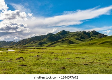 Open Prairie Grasslands in Tibetan Amdo Region of Central China. Meadows with view of Gentle Foot Hills in Distance. Summer Day with Blue Sky and No People. (Ngawa, Sichuan Province, China).