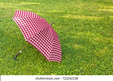 Open purple colored umbrella on the green grass