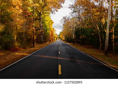open road  fall foliage