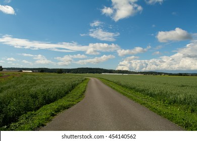 A open road on the country side in lovely summer weather with blue sky