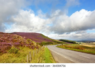 Open Road thru Scottish Countryside, Scotland. Uk