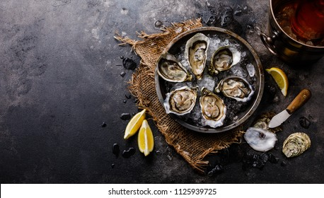 Open shucked fresh Oysters with lemon and Rose Wine in ice bucket on dark background copy space