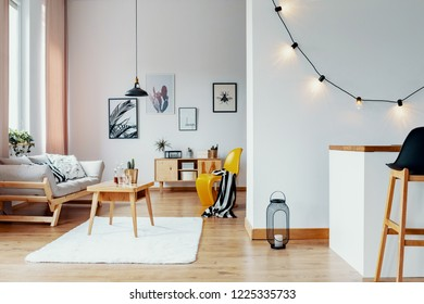 Open space flat interior with posters and lights on the wall, wooden coffee table with cactus and whiskey in glass carafe in real photo with window with pastel pink drapes