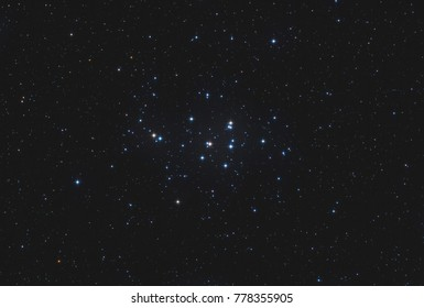 The open star cluster Messier 44 / Praesepe in the constellation Cancer