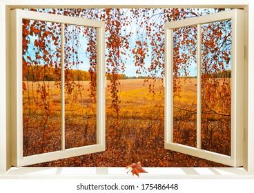 Open window overlooking the autumn forest
