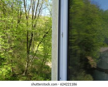 Open window overlooking green forest
