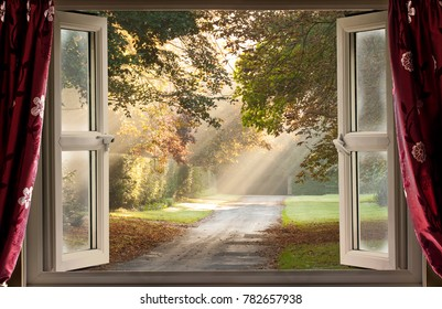 Open window view onto a glorious morning with sunlight rays coming though the trees onto a country lane.
