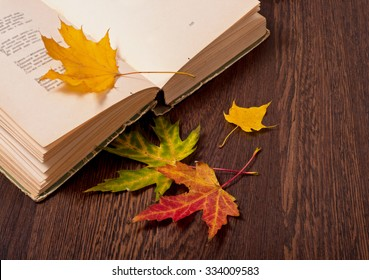 Opened book and autumn leaves on wooden table. Autumn mood concept