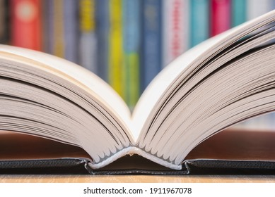 Opened book pages with blurred soft background
