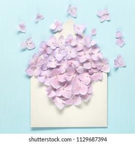 Opened envelop with hydrangea flower
