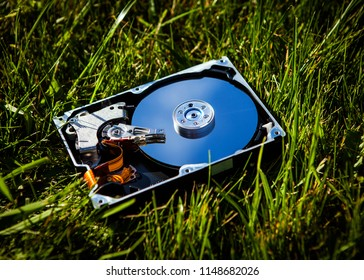 Opened Hard Disk Drive on the Grass