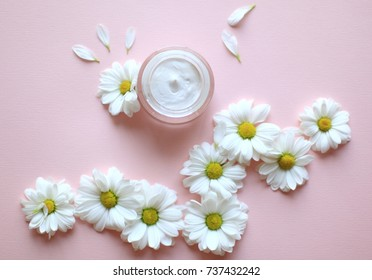 Opened jar with chamomile face cream or body cream with chamomile flowers on pink background. Macro top view chamomile cream with flower petals