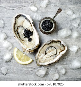 Opened oysters with black sturgeon caviar and lemon on ice on grey concrete background. Top view, flat lay, copy space.