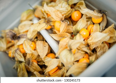 Lot of opened physalis in a basket