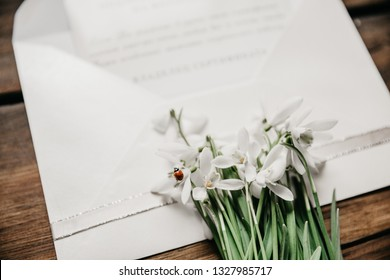 Opened white envelope with snowdrops and ladybug.