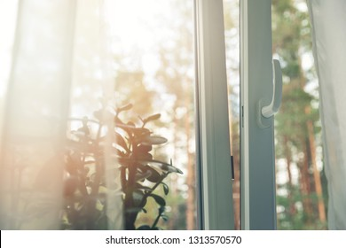 opened white plastic pvc window with forest background