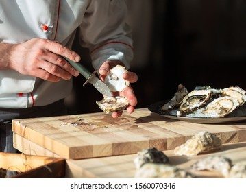 Opening the hollow and flat oysters. Chef opens oysters in the restaurant