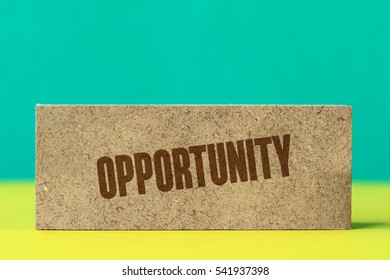 Opportunity, Business Concept