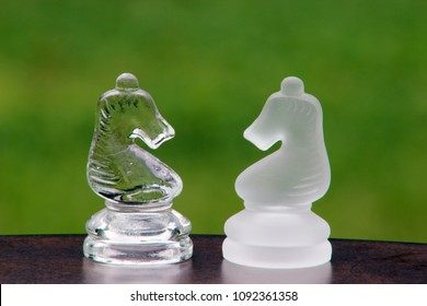 Opposing Glass Chess Knights with Green Background