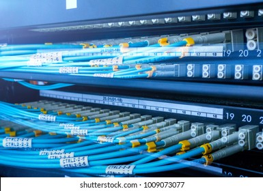 Optical cable close-up. Network devices technology, optical fiber cable and switch.