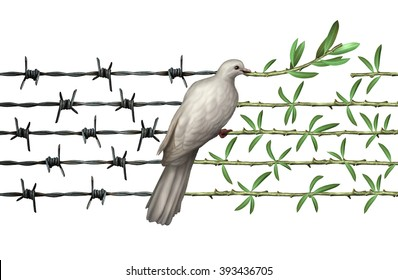 Optimism concept and diplomacy hope symbol as a dove on barbed wire to olive branches as an icon for humanity and a global safer world or a greeting for earth day isolated on white.