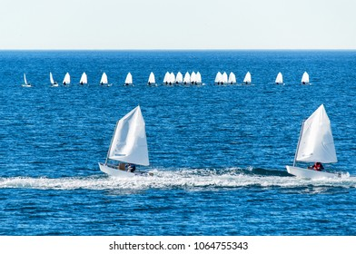 Optimist sailboat during a training session in the sea